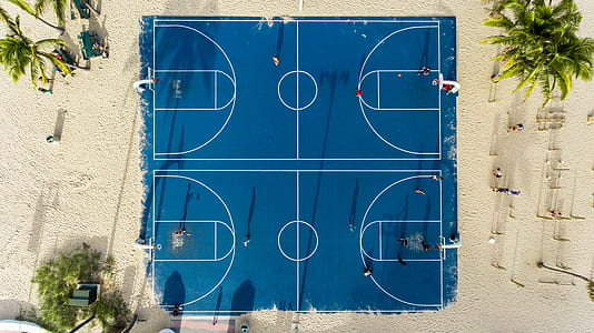 aerial view of blue basketball court in the middle of sand with coconut trees