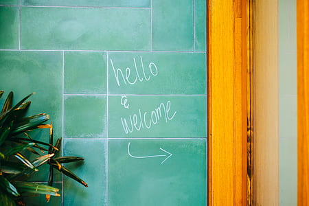 hello welcome painted on wall near green leaf plant