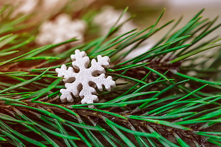 white snowflake ornament on green leaves