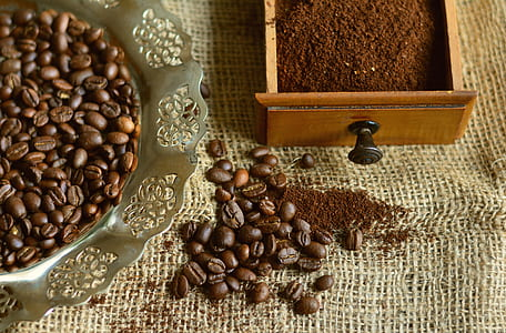 coffee beans on tray