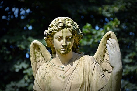 selective focus photography of angel concrete statue
