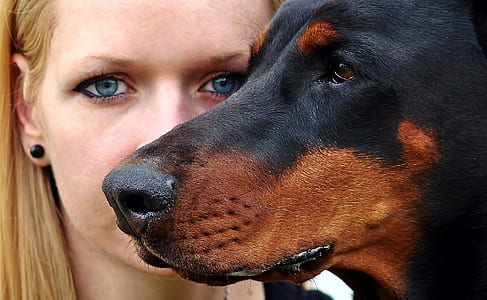 closeup photo of woman beside adult black and mahogany rottweiler