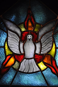 white and red bird stained glass