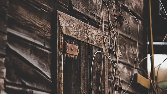 Close Up Photo of Gray Wooden Door