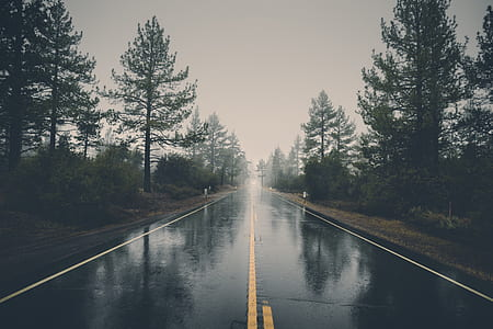 gray asphalt road