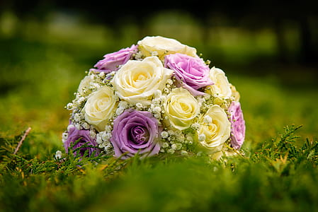 beige and pink floral bouquet on green grass