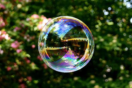 photo of bubble near plant
