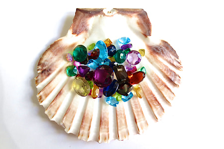 flat lay photography of rhinestones on top of clam shell