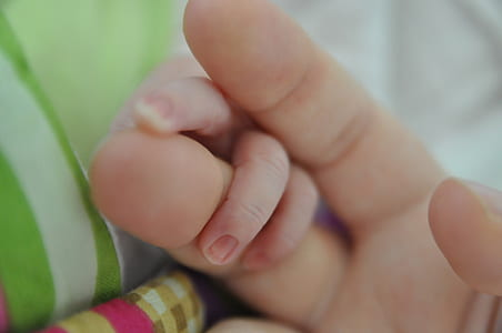 photography of infant and person holding hands