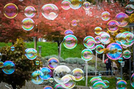 clear bubble lot