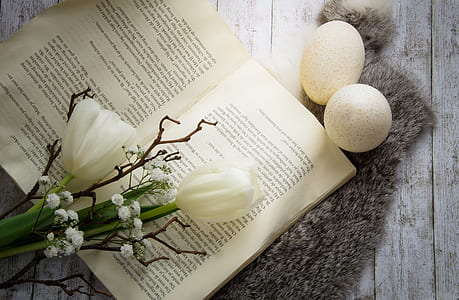 white flowers on top of opened book