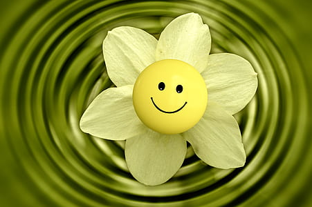 white petaled flower with smile sticker