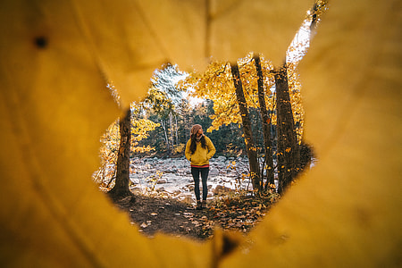 A woman hiking in the forest trees during the Autumn