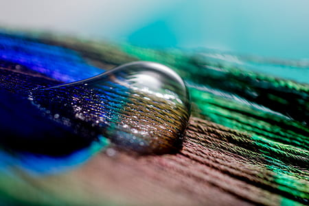 close-up photo of water drop on wooden surface