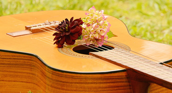 Royalty free photo red and yellow flowers on brown classical guitar red and yellow flowers on brown classical guitar mightylinksfo