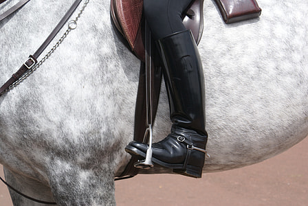 person wearing black leather shoes riding on white horse