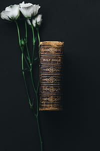 white flowers and brown holy bible