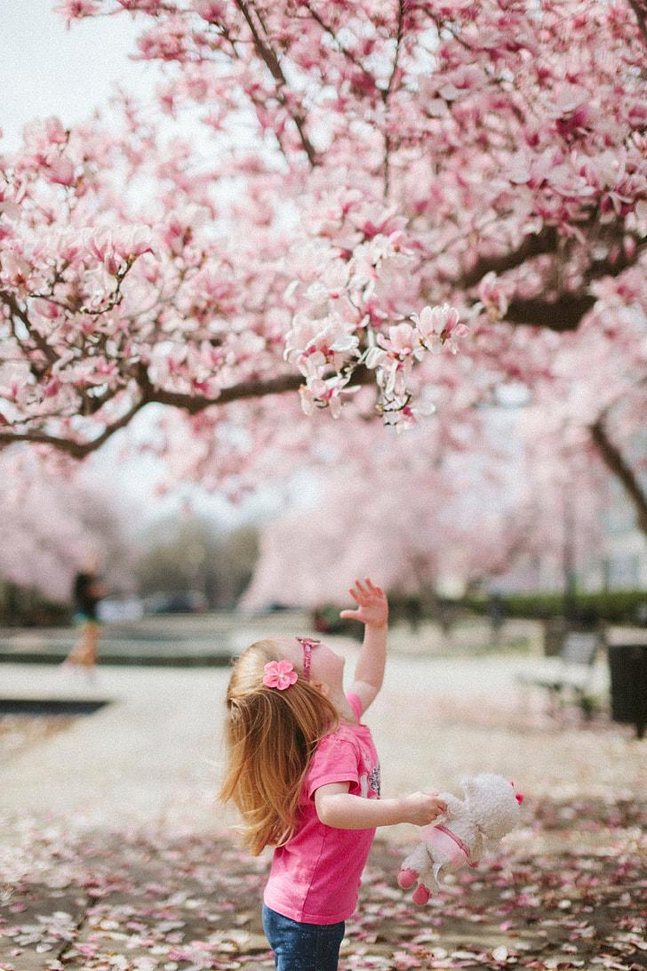 girl near the cherry blossom tree