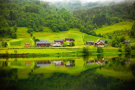 mirror reflection of village on mountain slope near thick forest