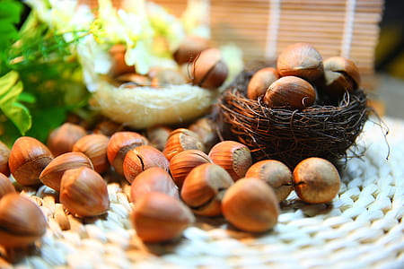 brown chestnuts lot