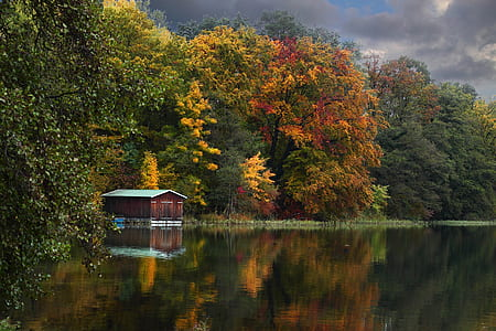 reflective photography of house near body of water and tall trees