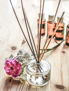 clear glass vase and brown decorative sticks