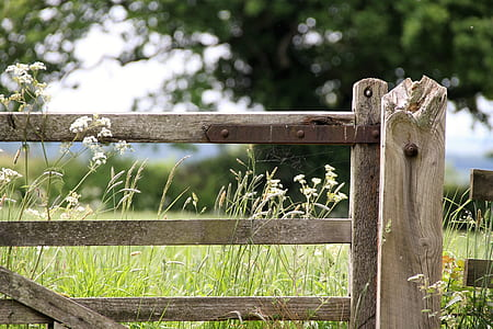 shallow focus photography of brown wooden gate
