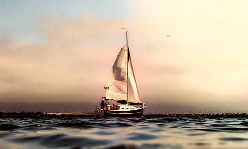 white boat sailing