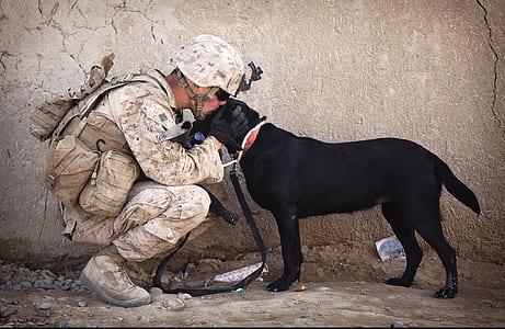 soldier kissing adult black Labrador retriever on head