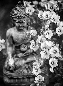 budai beside petaled flowers