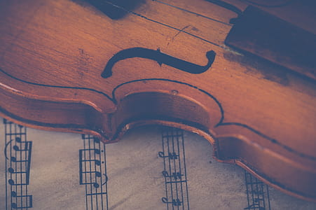 brown violin with music score