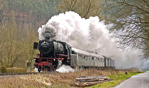gray and black train near green tall tress