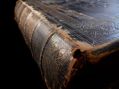 brown leather covered book in close up shot