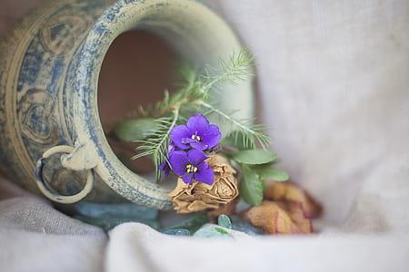purple commelinaceae flower in vase