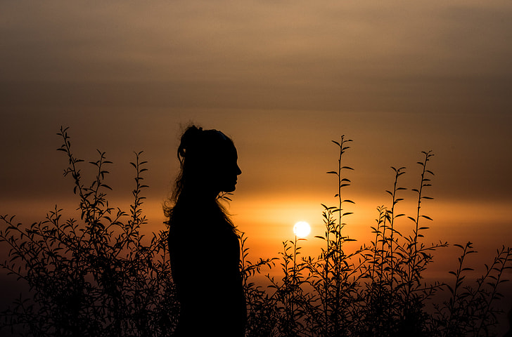 tall grass field sunset. Person Standing In Tall Grass Field During Sunset E
