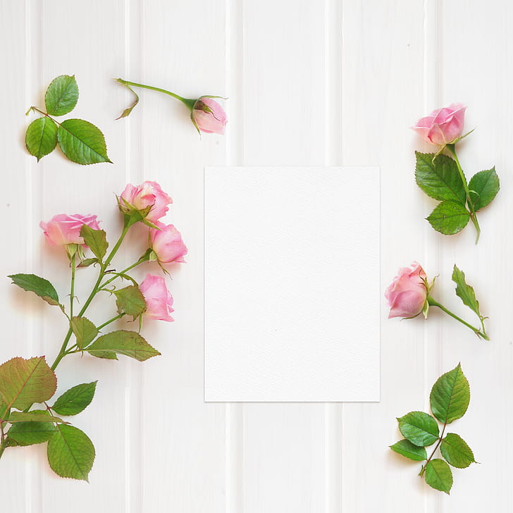 Royalty free photo white printer paper beside pink petaled flowers white printer paper beside pink petaled flowers mightylinksfo
