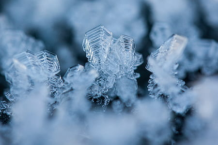 macro photography of ice crystals