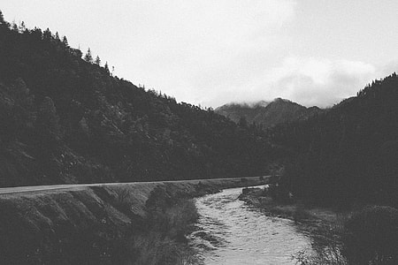 greyscale photography of road near river