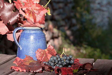bokeh shot of blue ceramic pitcher and grapes