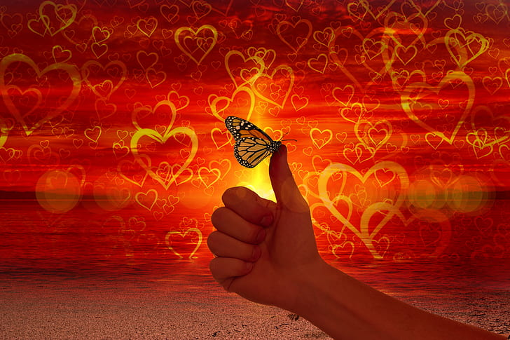 heart, love, like, thumb, butterfly, ease
