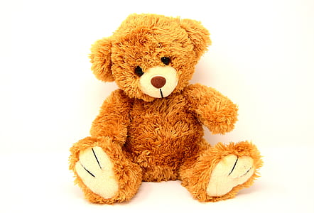 brown teddy bear plush toy