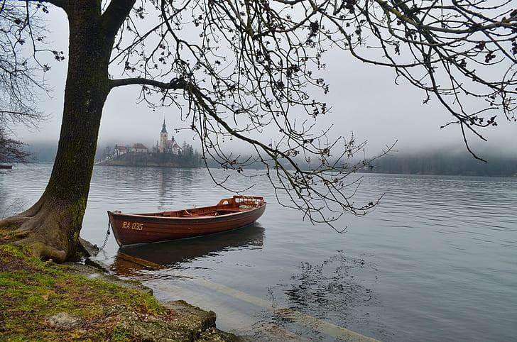red jun boat on body of water near bear tree