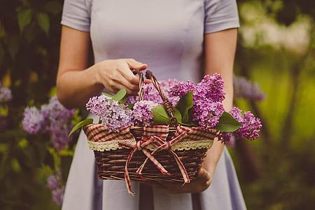basket of purple petaled flowers