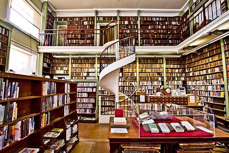 interior photo of library
