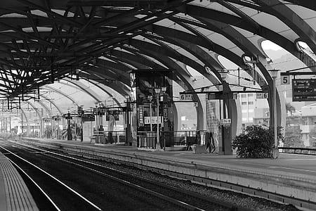 Train Terminal Gray Scale Photo