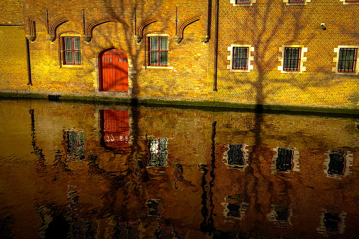 House Reflection