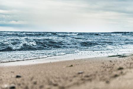 macrophotograph of beach shore