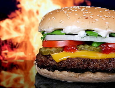 cheese burger with onion and tomato